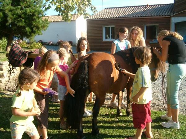 Balade à poney aux sables d'olonne pour les enfants