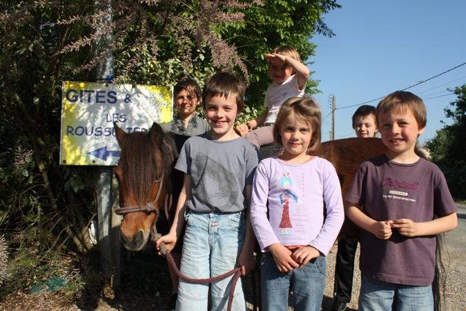 Randonnées et balades à poney