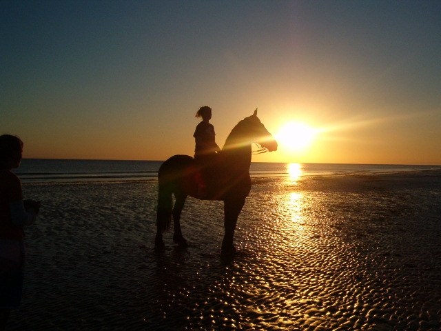 Magnifique coucher de soleil à cheval les sables d'olonne