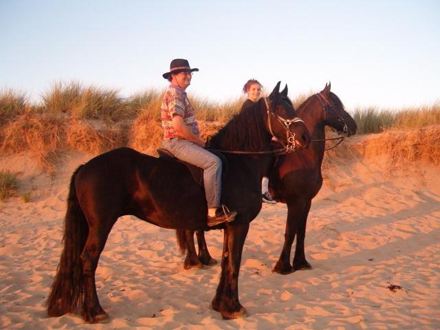 Chevaux dans les dunes, nous sommes à 5 minutes des Sables d Olonne