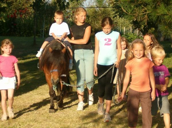 Découverte du poney