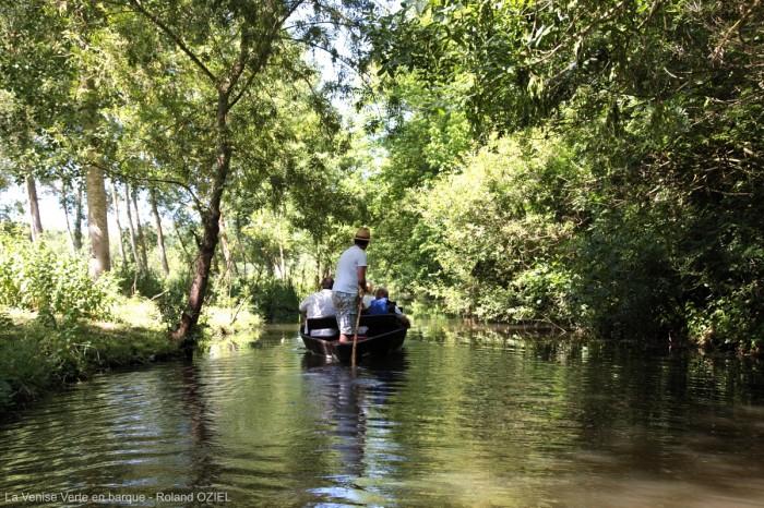 Marais Poitevin et la Venise Verte en barque